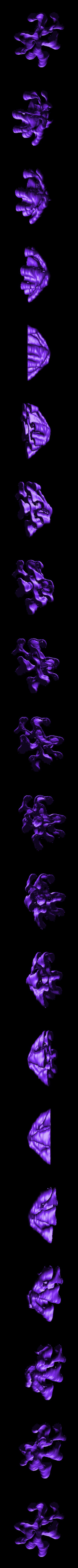 gro8.stl Download free STL file Weird terrain collection • 3D printer object, ferjerez3d
