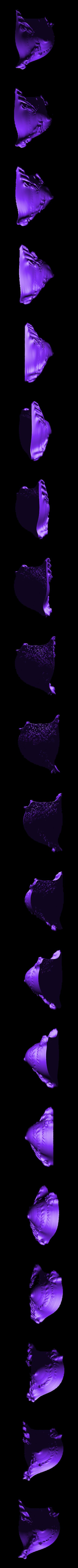 pie1.stl Download free STL file Weird terrain collection • 3D printer object, ferjerez3d