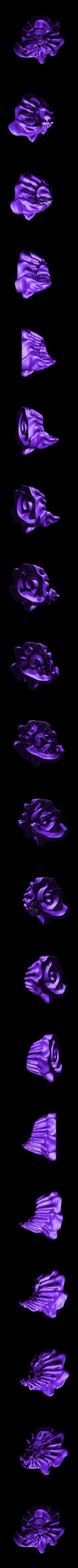 spiral2.stl Download free STL file Weird terrain collection • 3D printer object, ferjerez3d
