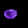Sammy02R187.obj Download free OBJ file Sammy02 • 3D printing object, 3DLadnik