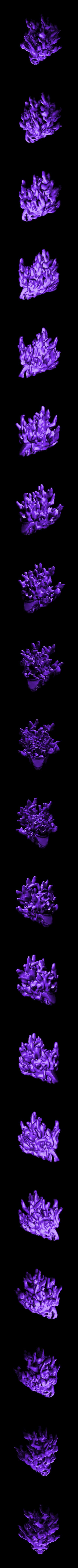 flamingSkull.stl Download free STL file Flaming Skull - 28mm D&D miniature • 3D printing model, pyrokahd