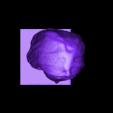 louvre-veiled-head-of-a-woman-decimated-1.stl Télécharger fichier STL gratuit Femme voilée au Louvre, Paris • Modèle à imprimer en 3D, Louvre