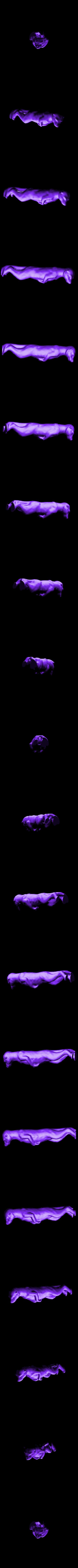 suricat1.stl Download free STL file Garden figure of a surakat (probably) • 3D printable design, AVIZO