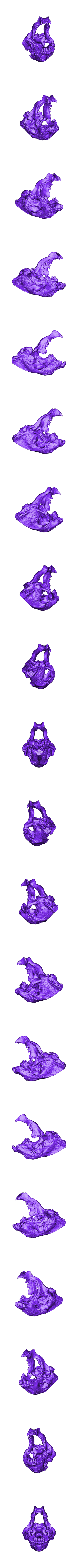 Tiara_Skull.stl Download free STL file Storied Skulls Crown and Tiara • 3D printer model, alterboy987