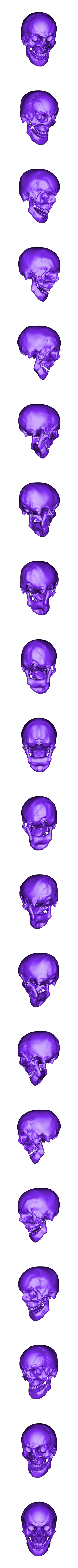 Human Skull w. Mandible.OBJ Download 3DS file Human Skull and Mandible  • Object to 3D print, Programmed