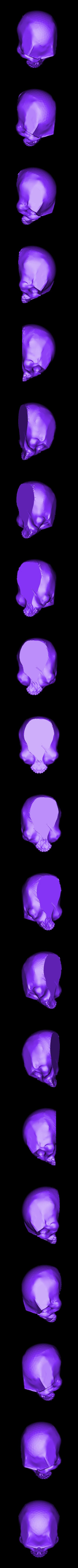 Waxy_skull.stl Download free STL file SKULL - WAXY • 3D printable template, Bugman_140