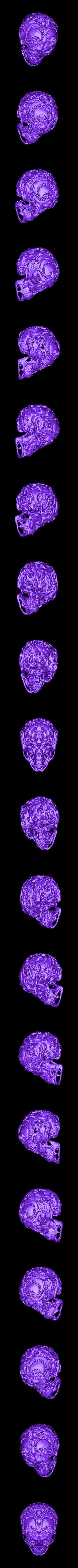 huntersskullremesh.stl Télécharger fichier OBJ gratuit Chasseurs - Crâne de chasseur • Modèle imprimable en 3D, SYFY