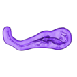 DeadDino.stl Download free OBJ file Dead Dino (aka Mass Graves of Coelophysis) • 3D printing object, gabutoillegna56