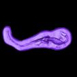 DeadDino_low.stl Télécharger fichier OBJ gratuit Dead Dino (alias Mass Graves of Coelophysis) • Design imprimable en 3D, gabutoillegna56