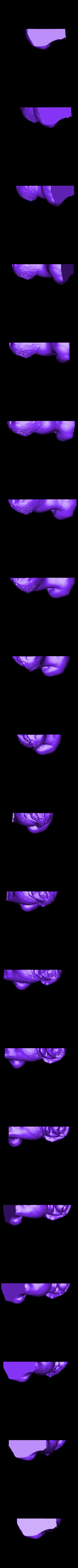 GuardianLionSide_JasonBakutis.stl Télécharger fichier STL gratuit Lion Gardien • Objet pour impression 3D, metmuseum