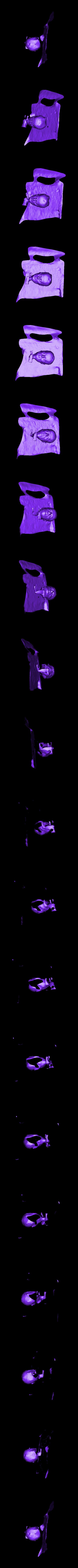 viewable_v4.stl Télécharger fichier OBJ gratuit Tête d'un clerc d'une effigie de tombeau • Plan pour imprimante 3D, metmuseum