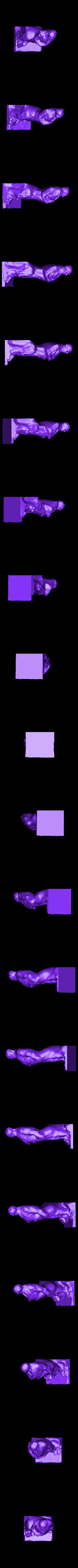 Daniel_Webster_Ready.stl Télécharger fichier STL gratuit Daniel Webster, modelé et moulé 1853 • Design pour imprimante 3D, ArtInstituteChicago