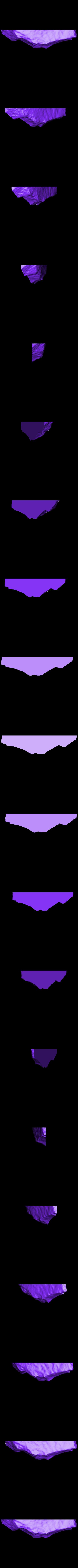 trilobite-P149623-Cut_2.stl Télécharger fichier STL gratuit Trilobite (P149623) • Plan pour impression 3D, MuseumVictoria