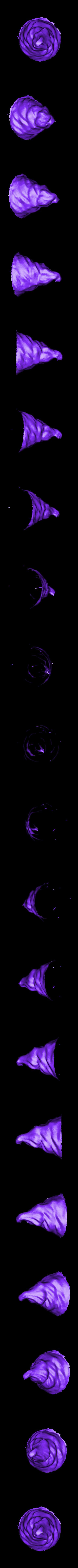 icecreamtop100.stl Télécharger fichier STL gratuit Mmmmmmmmmmmm Crème glacée • Design imprimable en 3D, RodrigoPinard
