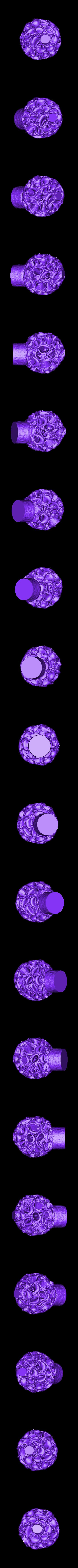 Curly_Flower_Scan.stl Download free STL file Curly Flower Scan • 3D printable model, ErnyCrazyPrinter