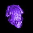 Tiny_Frog-1.stl Download free STL file Tiny Frog • 3D print template, ErnyCrazyPrinter