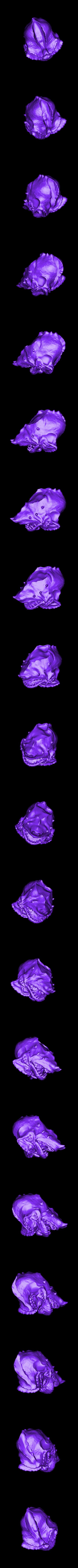 Stripe_head.stl Download free STL file Stripe Gremlin • 3D printer model, 3rdesignworks