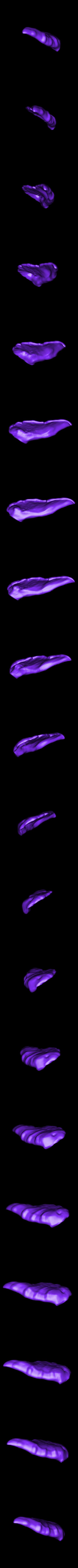 Stripe_right_ear.stl Download free STL file Stripe Gremlin • 3D printer model, 3rdesignworks