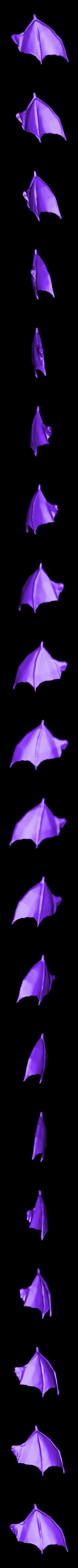 charizard_left_wing.stl Download free STL file Charizard • 3D print model, KerberosFi