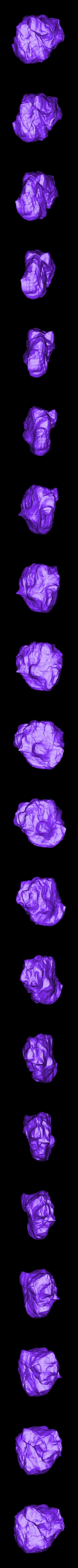 rock_SubTool6.stl Télécharger fichier STL gratuit Roches pour le wargame (collection de 18 roches haute résolution) • Design pour impression 3D, BREXIT