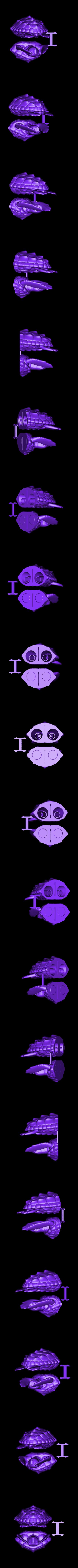 Loggerhead_plated.STL Download free STL file Loggerhead Sea Turtle (poseable) • 3D printer template, Ogubal3D