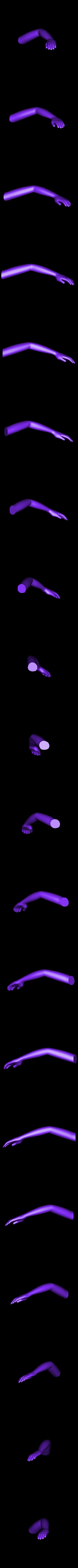 arm_left.stl Download free STL file Alice • 3D printable object, reddadsteve