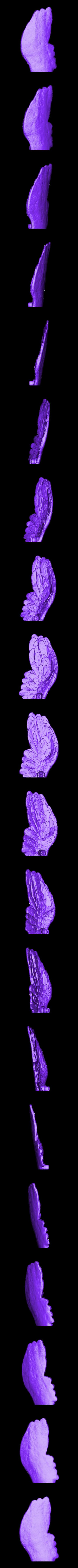 Left_Wing.stl Télécharger fichier STL gratuit Gorille Ares • Plan pour imprimante 3D, Pwenyrr