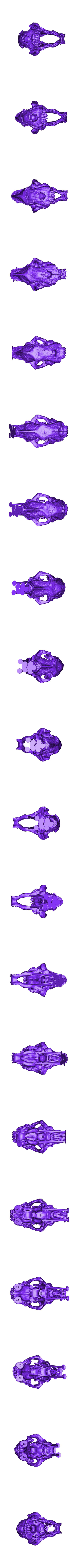 MiniSaberToothSkull_Supported.stl Download free STL file MiniSaberToothSkull improvement Support • Template to 3D print, Pwenyrr