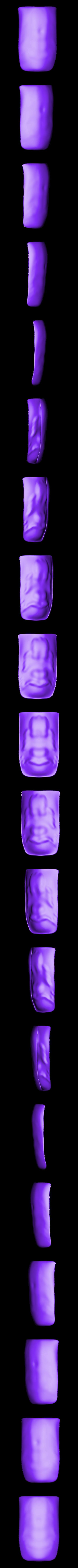 Soft_object.stl Télécharger fichier STL gratuit Corporeal - Un projet de dissection humaine • Modèle pour impression 3D, Pwenyrr
