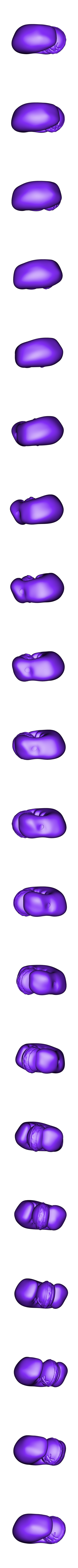 M.Krabs - Pince Droite.stl Download free STL file Mr. Krabs • 3D printable design, BODY3D
