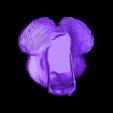 NO support brain bottom drfempop.stl Télécharger fichier STL gratuit Jardinière de cerveau • Design à imprimer en 3D, DrFemPop