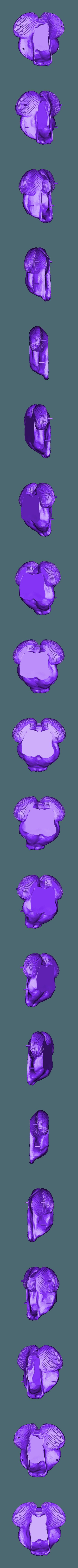 With Support brain bottom drfempop.stl Télécharger fichier STL gratuit Jardinière de cerveau • Design à imprimer en 3D, DrFemPop