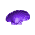 Large_Shell.stl Download free STL file Sea Shell - Digitizer MultiScan • Design to 3D print, Muzz64
