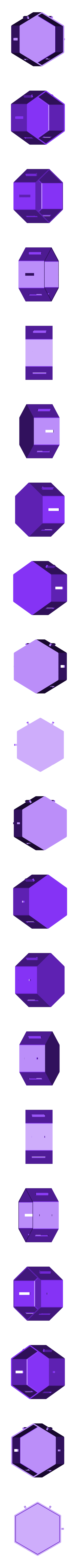 HexStackers.stl Télécharger fichier STL gratuit Empileurs hexagonaux • Objet imprimable en 3D, Muzz64