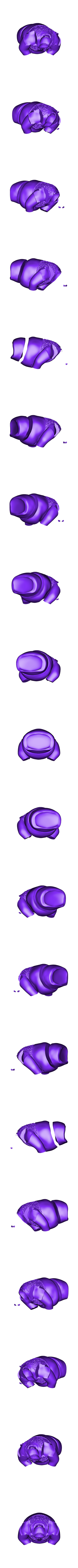 Shrek-MMU-white.stl Télécharger fichier STL gratuit Shrek en armure (prêt pour MMU) • Design pour imprimante 3D, ChaosCoreTech