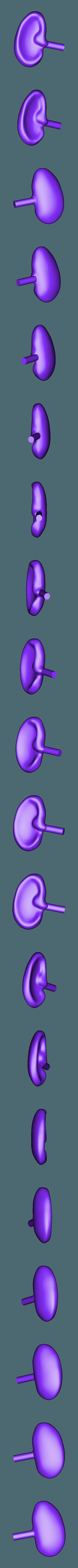 right_ear.stl Download free STL file Mr. Potato Head [Toy Story] • 3D printer template, Dream_it_Model_it