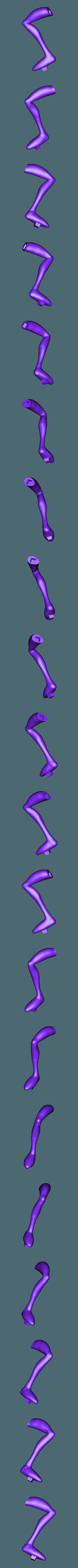 PiernaD PR.OBJ Télécharger fichier OBJ gratuit Ver de terre Jim • Plan pour impression 3D, taiced3d