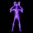Pale_Plate.obj Télécharger fichier OBJ Un homme pâle • Objet à imprimer en 3D, h3ydari96