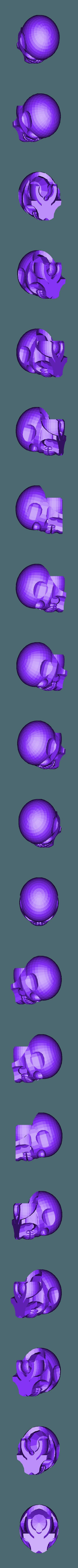 craneo.stl Télécharger fichier STL gratuit ossature • Design imprimable en 3D, brayanrosas94