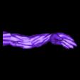 avant-bras.stl Télécharger fichier STL gratuit Branche gratte-dos • Objet pour imprimante 3D, micaldez