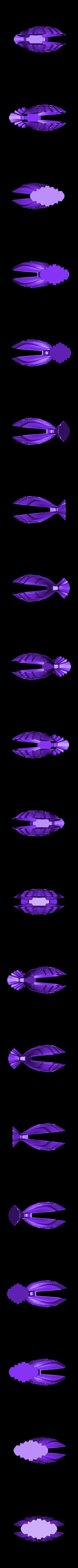 coquille v6.stl Download free STL file towel holder shell • 3D printable template, micaldez