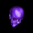 Evil_Skull.obj Download free OBJ file Evil Skull 3D Print Concept • 3D printer template, CarlCreates