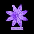 euroreprap_flower-aster_a (1).stl Download STL file flowers: Aster - 3D printable model • 3D printable template, euroreprap_eu
