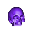 Spell Book Skull.stl Download free STL file Halloween 'Spell Book' Box or themed 'Jack-in-the-box' • 3D printing model, Sigma3D