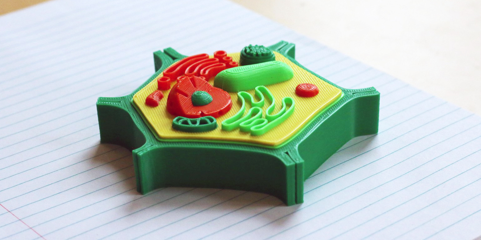 Find here a selection of the best biology related 3D models to make with a 3D printer