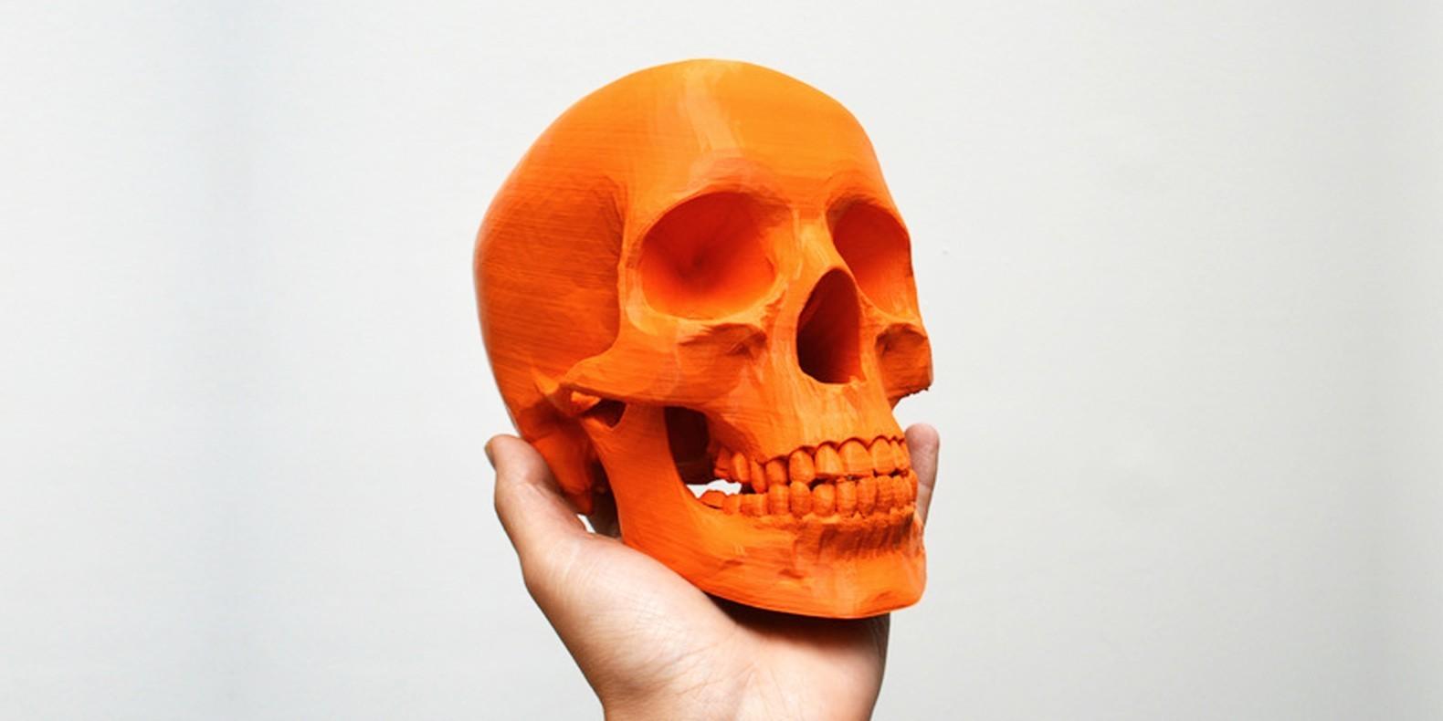 Descubra en esta selección de modelos 3D, todos los mejores archivos STL de cráneos