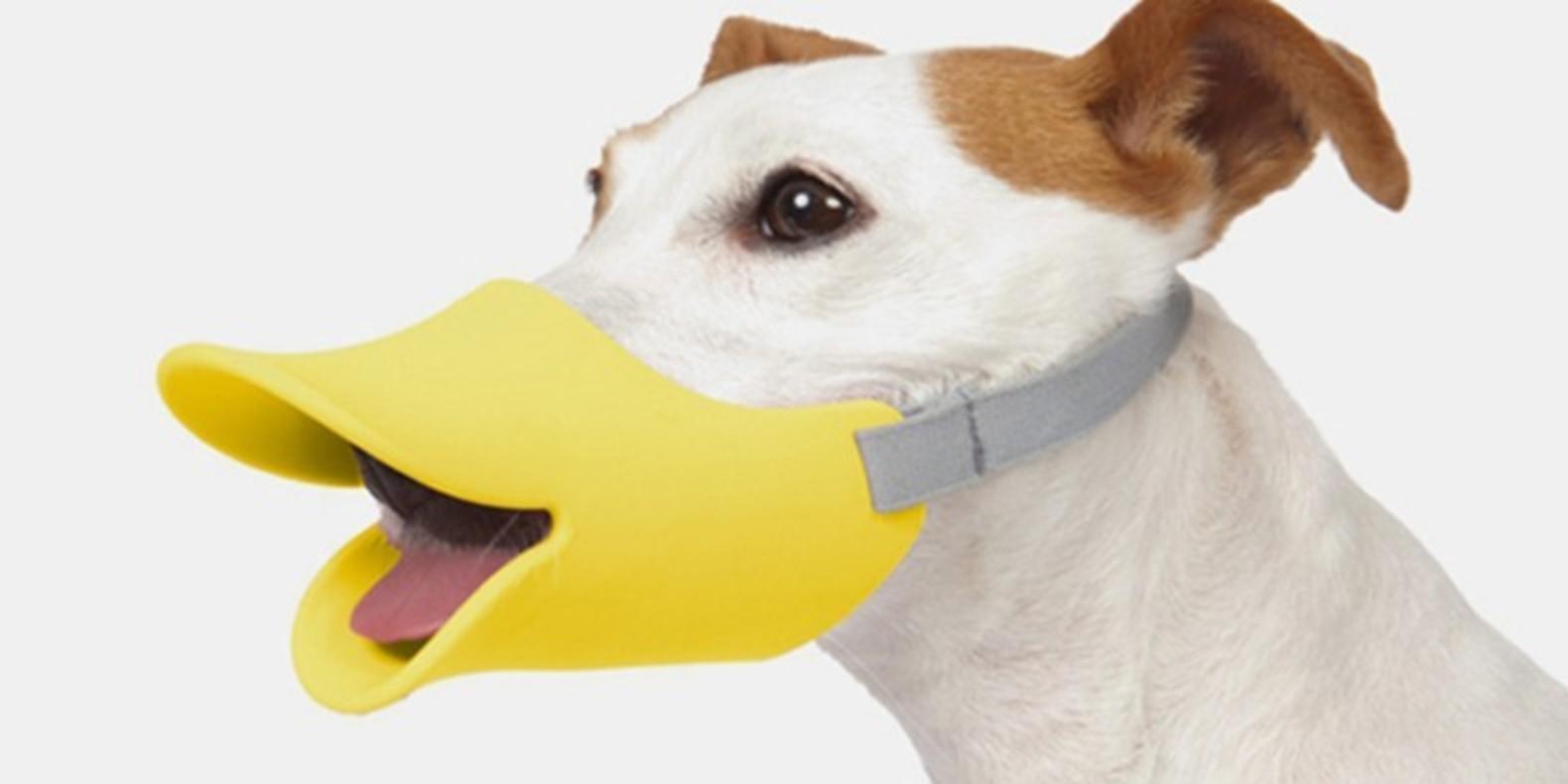 Encuentre aquí una selección de los mejores modelos 3D de mascotas para hacer con una impresora 3D