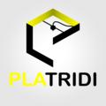 Platridi