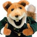 foxtee