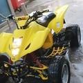 DylM12